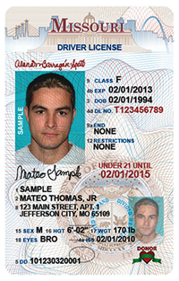 image of a person's driver's license